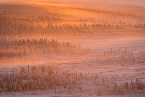 The International Landscape Photographer of the Year     I migliori fotografi di paesaggio del mondo